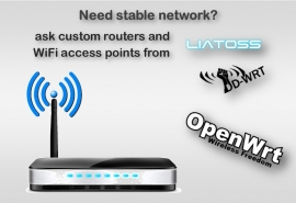 Custom Routers for Stable Networking